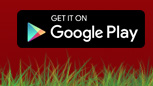 Download PortuGOAL App on Google Play